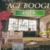 Ace Boogie - No Flocking