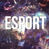 E-Sportowy Sen ft. VexHQ (7 Years) by. GeneralTV