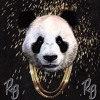 DESIIGNER - PANDA (RYAN BROWNE HOUSE FLIP) *FREE DL*