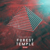 Tisoki & Spag Heddy - Forest Temple (Tisoki VIP)