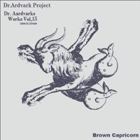 "Dr.Aardvark Project 'Rise And Fall' from the ""Brown Capricorn Suite"" Sampler (2016)"