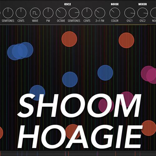 Shoom Hoagie