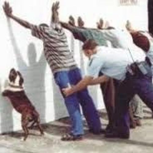 PERTURBAÇÃO DA DESORDEM