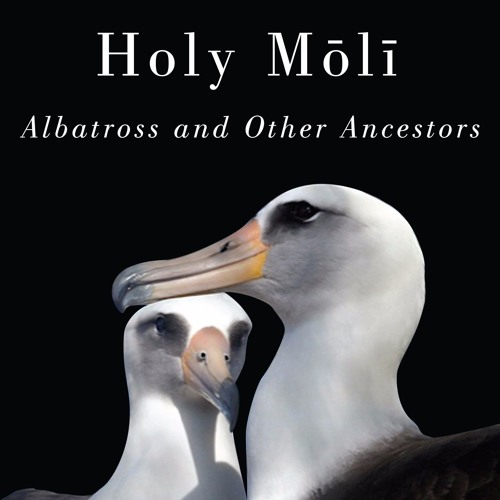 Holy Moli: An Interview with Author Hob Osterlund