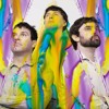 Animal Collective ~ Interviewed on 2SER's Static