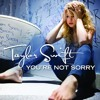 You're Not Sorry (Taylor Swift)