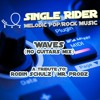 Waves (No Guitars Mix) - Robin Schulz / Mr. Probz Cover