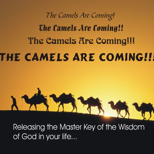 The Camels Are Coming!