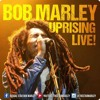 Zion Train - Bob Marley - Uprising Live