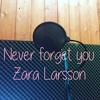Never Forget You- Zara Larsson