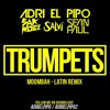 Sak Noel  Salvi Ft. Sean Paul - Trumpets (Adri El Pipo Moombah-Latin Remix)