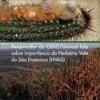 Pesquisador do CRAD/Univasf fala sobre importância do Herbário Vale do São Francisco (HVAS)
