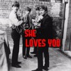 THE BEATLES - She Loves You (Cover)