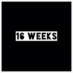 16 Weeks(demo)