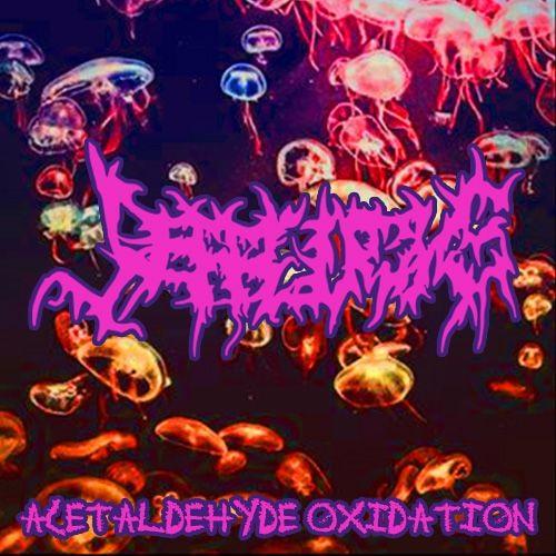 Jefflocks - Acetaldehyde Oxidation