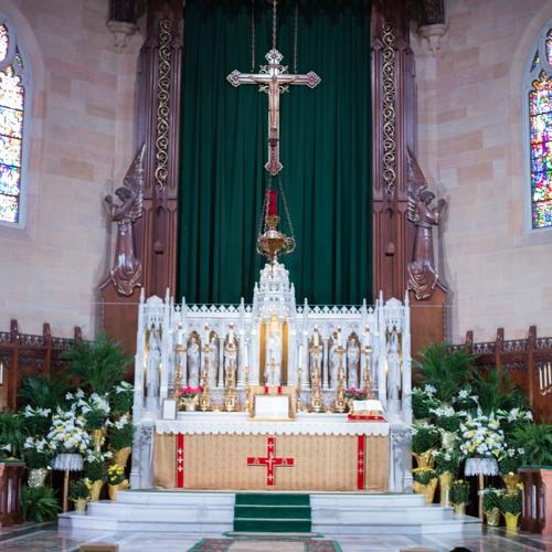 2016-04-10 Homily of Fr John Bustamante - Discusses Amoris Laetitia at 9:30 EF Mass