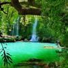 Waterfall Scrub Green
