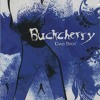buckcherry crazy bitch guitar cover