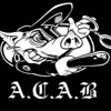 A.C.A.B.  - We Are The Youth