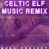 Celtic Elf Music Remix