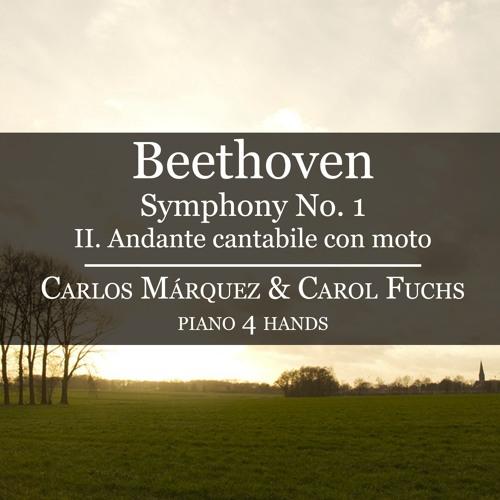 Ludwig van Beethoven: Symphony No  1  Andante Cantabile Con Moto
