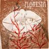 ANUAH- album Floresta- song REsonancia