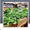 Organic Farm Stand with Guest Kulveen Virdee, ND