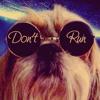 Don't Run (feat. Bren Santabalbina)