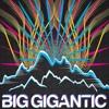 Diplo - Revolution & Flux Pavillion - I Can't Stop (Big Gigantic Remix)