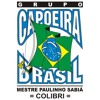 Capoeira Brasil Chicago - 2016 Batizado - Night Roda Day 2 - Part VII