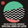 Kelvin Sylvester, Nephrok! - Special Kind Of Love (Original Mix)