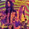Drum Cover - Black Sunshine (White Zombie)