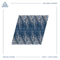 Golden Vessel - Never Know (Ft. LASTLINGS)