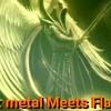 Gothik metal meets flamenko (140 bpm metal + flamenco).mp3