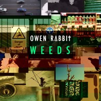 Owen Rabbit - Weeds