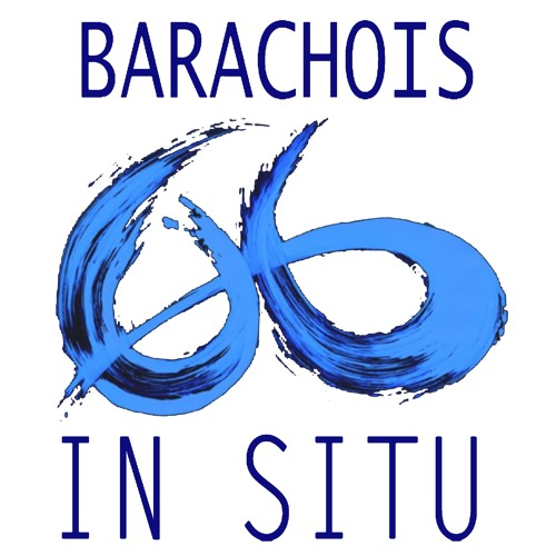Entrevue Barachois In Situ - BIS | John MICHAUD | BPBH ICI Gaspésie 2016 - 04 - 26