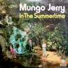 In the summertime (cover Mungo Jerry)