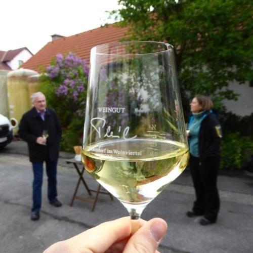 In die Grean gehen im Weinviertel
