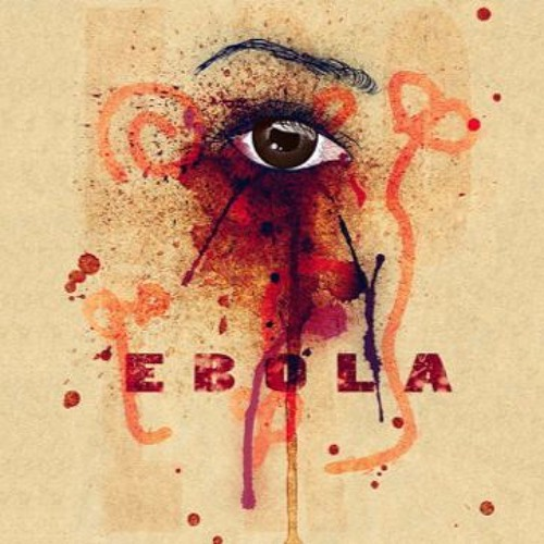 Learning from the West African Ebola Epidemic: The Role of Governance in Preventing Epidemics