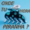 130 BPM MC METADE -ONDE TU MORA PIRANHA -DJ POLYVOX & BRUNNO DJ
