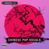 Kit 3 - Love Never Removed - Chinese Pop Vocals Vol 1