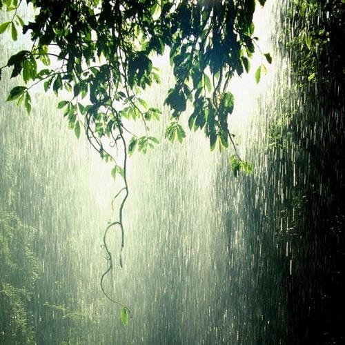 sonora tropical/abre sierra - lluvia / ni(agua)  (bombombum dub)