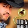 Diego Herrera - Bien Calada [Estreno 2016]*[Exclusivo]*[Tema Desamor y Original]