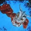 Ultraman Leo Opening 1