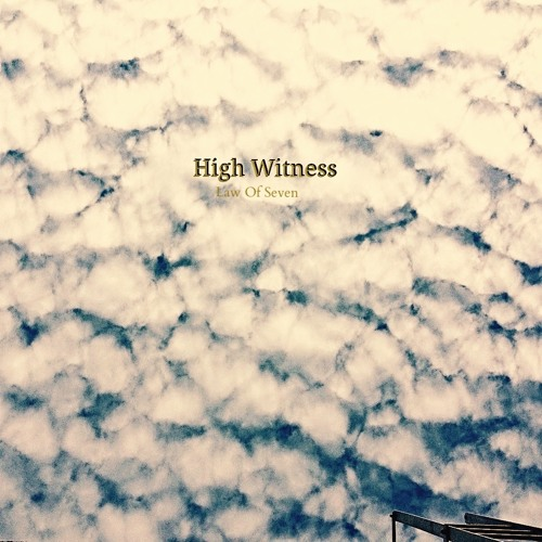 High Witness - Homeland Insecurity