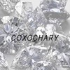 Drake & Future - Diamonds Dancing (COXO COVER)
