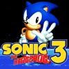 Sonic The Hedgehog 3 & Knuckles - Big Arm