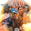 Chris Brown -Socialize (Ft Young Blacc, Young Lo, Kevin Gates) (Before The Trap) Nights In Trazana