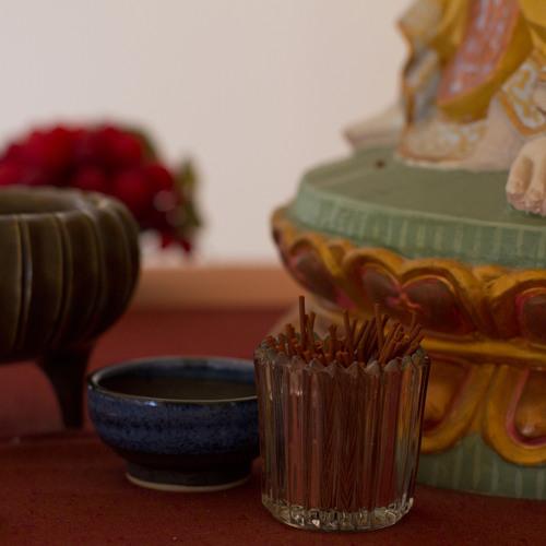 15 Minute Guided Meditation on Appreciative Joy w/ Brian Williams