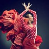 El Poeta - Mi estrella blanca (Fondo Flamenco) Cover